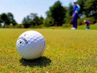 Gleich, ob im Turnier oder auf einsamer Runde übers Green – Golf ist unaufgeregt und dennoch hochspannend. Foto: Ipegasu | Pixabay