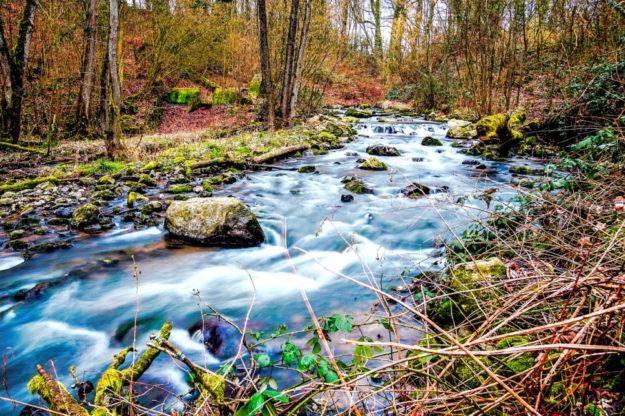 Für die Renaturierung von Wildbächen hat das Hessische Umweltministerium einen Teilnehmerwettbewerb ausgerufen. Symbolfoto: chrisbeez | Pixabay