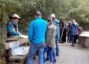 Am 3. Oktober ist Wolfstag im Wildpark Knüll. Auch erzählt werden indianische Märchen rund um den Waschbär. Foto: Wildpark Knüll