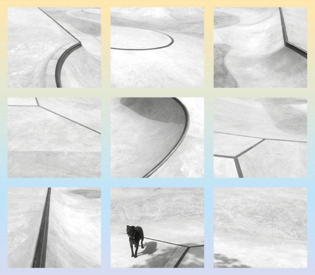 Auf dem Einladungsflyer für die Skate-Anlage ist zwar ein Hund zu sehen, doch zu suchen hat er dort nichts. Die Bahnen sind nur für den Freizeitsport. Foto: nh