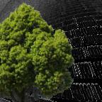 Die »Digitale Dorflinde« steht synonym für kostenlose Internet-Treffpunkte an öffentlichen Plätzen. Montage: Schmidtkunz / Fotos: Gellinger, Johnson | Pixabay