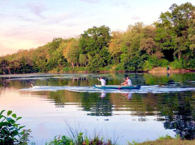 Mit dem Boot war dem Schwan zunächst nicht beizukommen. Erst als er ans Ufer floh, hatten die Tierschützer eine Chance. Foto: nh