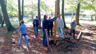 Bei der Wiedereinrichtung eines Forstgatters waren ebenso fleißige wie kundige Hände gefragt. Foto: LC Homberg
