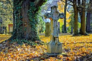 Mit einer symbolischen Reinigung einiger Grabmale auf dem Hauptfriedhof in Kassel macht sich die Steinmetz-Innung für eine bewusstere Erinnerungskultur stark. Foto: Bundesverband Deutscher Steinmetze