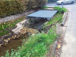 Bei Starkregen tritt der Goldbach zu leicht über seine Ufer. Stadt und Wasserbehörde wollen dagegen jetzt dringend etwas unternehmen. Foto: nh