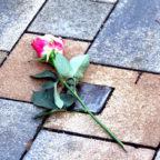 Stolperstein im Gedenken an den Treysaer Salomon Katzenstein, der im Alter von 87 Jahren im Folter-KZ Theresienstadt ermordet wurde. Foto: nh