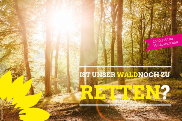 Das Bündnis 90/Die Grünen thematisiert auf einem Rundgang durch den Wildpark Knüll den Klimawandel. Foto: Felix Mittermeier | nh