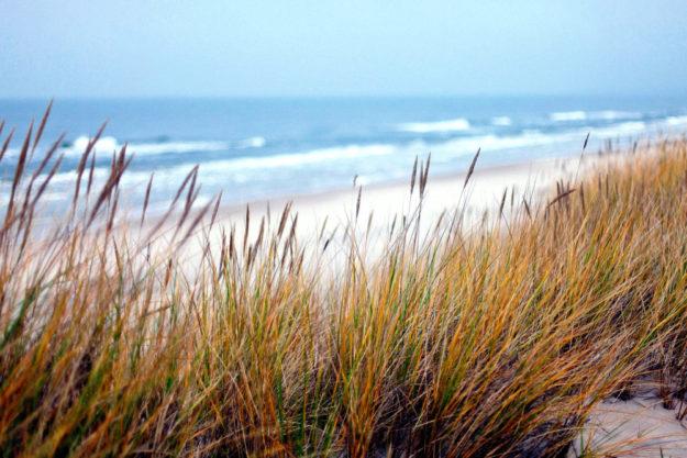 Strand, Dünen, Meer und mehr bietet die Jugendfreizeit im Ostseebad Dahme.