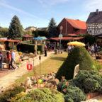 Der offene Garten der Familie Bittner/Keim wurde von zahlreichen Besuchern des Mosheimer Dorf-Flohmarktes bestaunt. Foto: nh