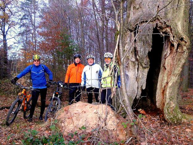 Mountainbike-Tour über die Höhenzüge - SEK-News