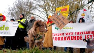 """Alle waren sich einig: """"Zukunft statt Tierfabriken"""". Foto: Jessica Wolff"""