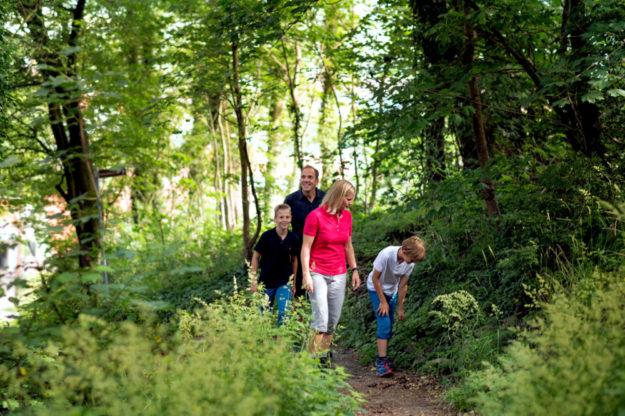 Für die Bürger*innen der Region bieten die Waldflächen des Chattengaus unentbehrliche Möglichkeiten zur Erholung. Foto: Paavo Blafield | nh