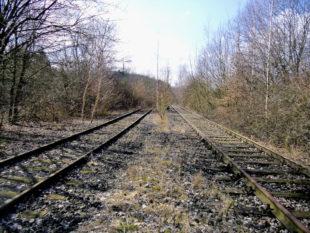 Eine Bürgerinitiative fordert aktuell die Wiederinbetriebnahme der Bahnstrecke Homberg – Treysa. Foto: Sprecherteam der Initiative Homberger Bürger