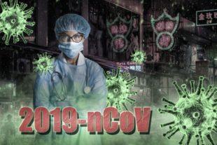Das neuartige Corona-Virus wirft Fragen auf, die medizinisches Fachpersonal ebenso wie interessierte Bürger vom Landkreis beantwortet bekommen. Foto: _freakwave_ | Pixabay