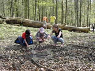 Im neuen Wildpark Club können Kinder und Jugendliche unter Gleichaltrigen die Natur erkunden. Foto: Wildpark Knüll