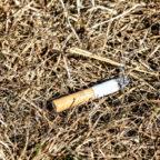 Die Trockenheit in Feld, Wald und Flur ist durch den leichten Regen der Vortage zurückgegangen. Das Umweltministerium konnte die Alarmstufe für Waldbrandgefahr zurücknehmen. Foto: Myriam Zilles | Pixabay
