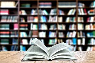 Dem Lesevergnügen sind keine strengen (Corona-)Grenzen mehr gesetzt. Foto: Gerd Altmann | Pixabay