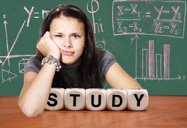 Ob ein Studium gleich nach der Schule das Richtige ist, dürfen Jugendliche gern mit den einschlägigen Beratungsstellen im Landkreis besprechen. Montage: gsk