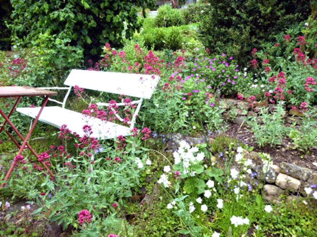 Umgeben von Blüten und von Kräuterduft lässt es sich im Garten prima entspannen. Foto: nh