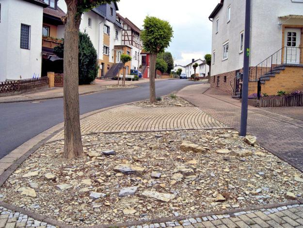 So mancher öffentliche Schottergarten könnte in Niedenstein ökologisch sinnvoller gestaltet werden. Foto: nh