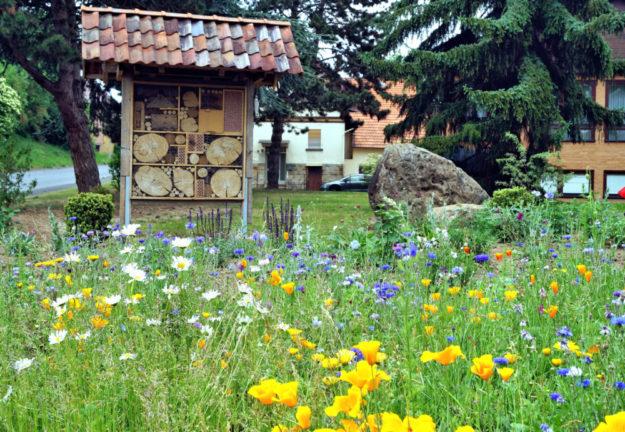 """Insektenhotels und Bienenwiesen wären das richtige Markenzeichen für ein """"Niedenstein, Stadt im Grünen"""". Foto: nh"""