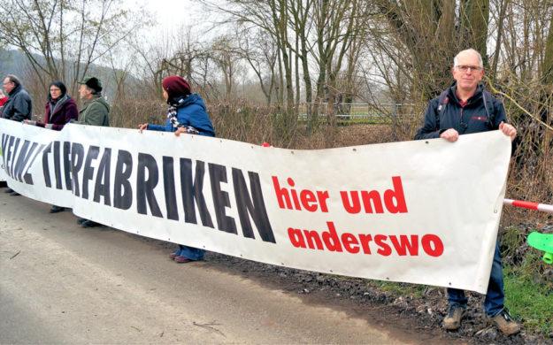 Vor den Gefahren der Fleischfabriken warnen die Bündnisgrünen schon lange. Foto: nh