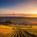 Eine nachhaltige Landwirtschaft unter ökologischen Gesichtspunkten hat den Landkreis nun zur Modellregion gemacht. Foto: David Mark | Pixabay