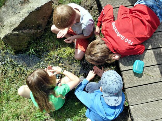 Moritz, Oskar, Jakob und Fabio (v.li.) suchen im Wasser nach Edelsteinen. Foto: pm | nh