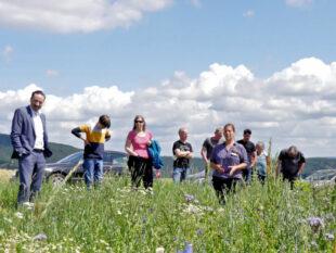 Der Staatssekretär des hessischen Umweltministeriums, Oliver Conz (li.), und seine Delegation besuchten das vom Landesbetrieb Landwirtschaft Hessen (LLH) betreute Rebhuhn-Feldflurprojekt in Bad Zwesten. Foto: nh