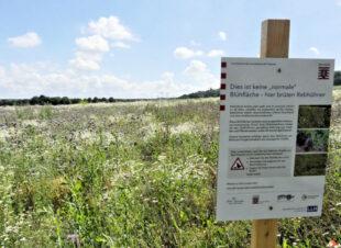 Ein Hinweisschild verweist auf die besondere Schutzfläche für die Rebhühner. Foto: nh