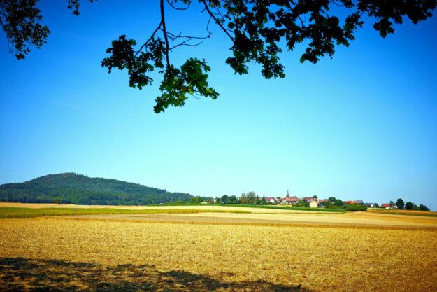 Altenburg bei Römersberg, Gemeinde Neuental. Foto: nh
