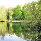 Als ein landschaftliches Idyll präsentiert sich der Grüne See im Melsunger Bergland. Foto: nh