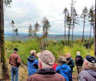 Auf Waldbegang attestierten die Jesberger Bündnisgrünen dem Hohen Kellerwald einen dramatischen Forstzustand. Foto: nh