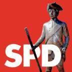 Der SPD Ortsverband Ziegenhain hat seine Kandidatenliste für die Ortsbeiratswahl aufgestellt. Symbolbild: seknews.de