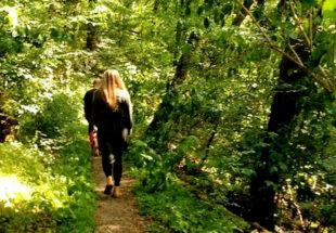 Ob barfuß oder leicht beschuht – auf meditativen Spaziergängen geht es rund um den Heiligenberg. Foto: nh
