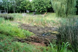 Schon im vorigen August zeichnete sich ab, dass ein unsachgemäßer Verschluss des Ablaufs die Teichanlage trockenfallen lässt. Foto: Jörg Warlich